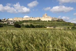 Die frühere Hauptstadt Mdina, auch stille Stadt genannt, beherbergt keine 250 Menschen. Kennzeichnend ist der maltatypische Kalkstein.   Fotos: Günter Saalfrank und Hilmar Bogler